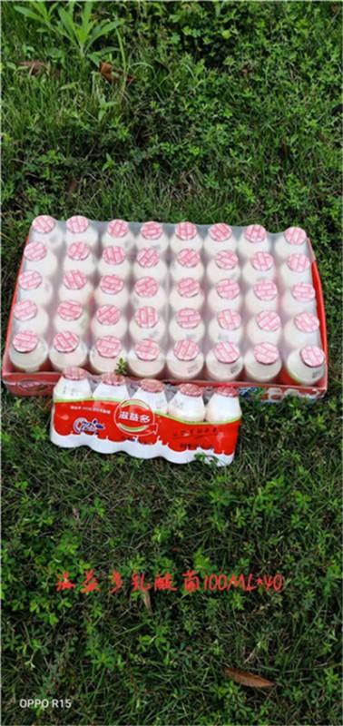 100ml乳酸菌40瓶装